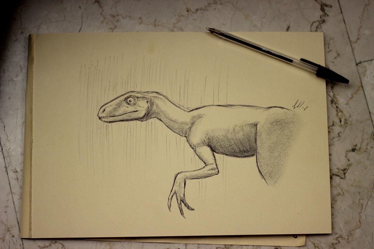 Dinomuseo