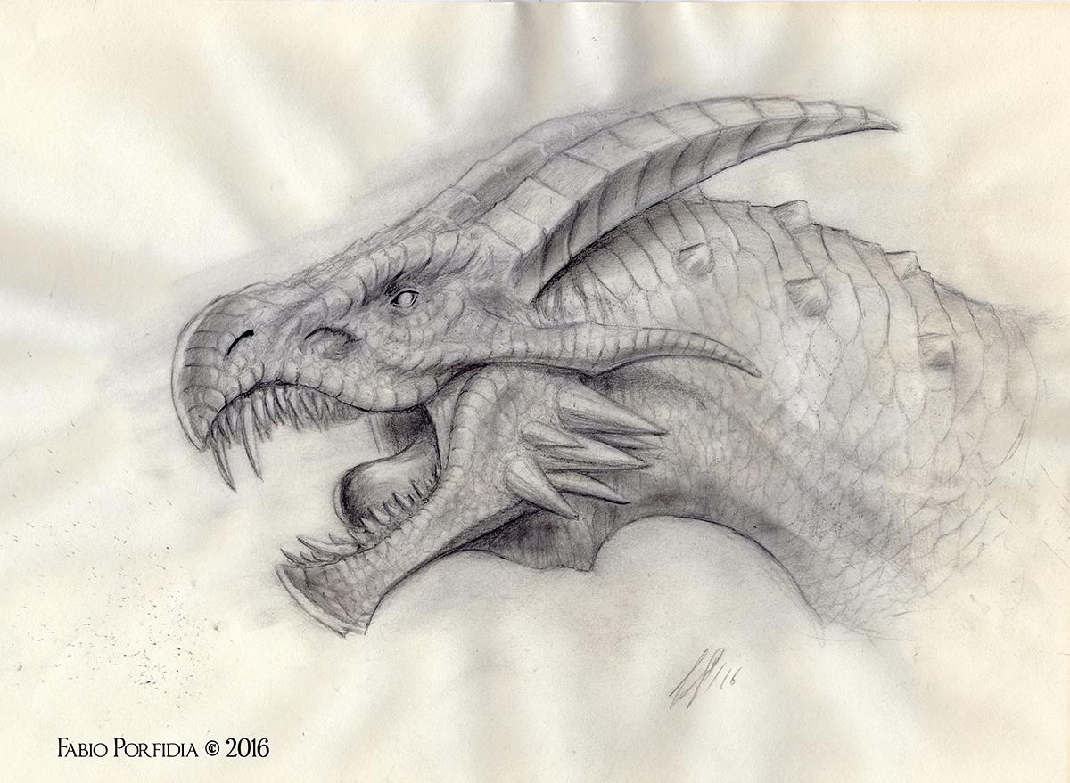Drago Torrecon