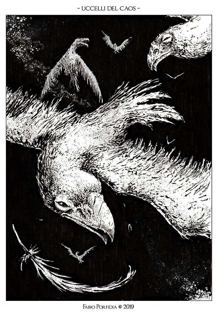 Uccelli del Caos
